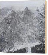 Mountains Of Austria Wood Print