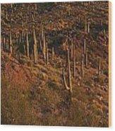 Mountainside Of Cacti Wood Print