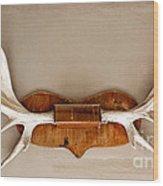 Mounted Elk Antlers Wood Print