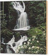 Mouse Creek Falls - Fs000675 Wood Print