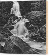 Mouse Creek Falls Wood Print