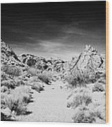 Mouses Tank Trail Valley Of Fire State Park Nevada Usa Wood Print