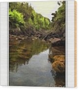Mouth Of The Brook - Calm - Shallow Water Wood Print