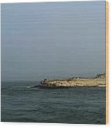 Mouth Of The Ocean Inlet Wood Print