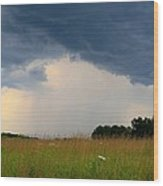 Mouth Of The Storm Wood Print