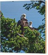 Mr. And Mrs Eagle Wood Print