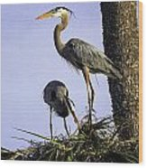 Mr. And Mrs. Heron Wood Print
