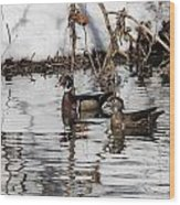 Mr. And Mrs. Wood Duck Wood Print