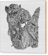 Mr Camel Wood Print