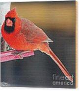 Mr. Cardinal Wood Print