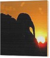 Mr Gobbles At Sunset Wood Print