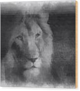 Mr Lion Photo Art 01 Wood Print