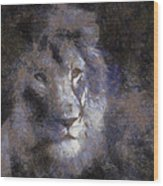 Mr Lion Photo Art 02 Wood Print