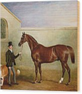 Mr Meakin Holding Sir Robert Peels Chestnut Hunter With His Dogs Hector And Jem Wood Print