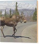 Mr Moose Wood Print