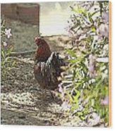 Mr. Rooster Takes A Stroll Wood Print