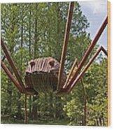 Mr. Spider Wood Print