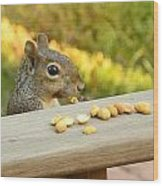 Mr. Squirrel Goes To Lunch Wood Print