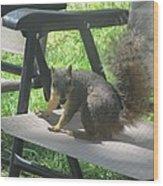 Mr. Squirrel Relaxing Wood Print