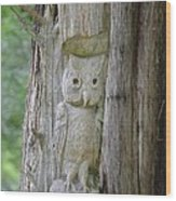Mr Tingle's Owl Wood Print