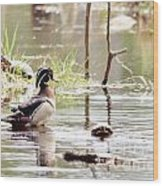 Mr. Wood Duck And Friends Wood Print