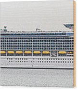 M S Independence Of The Seas Wood Print
