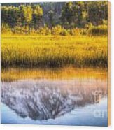 Mt Adams Reflection Wood Print