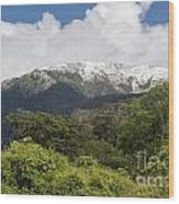 Mt. Aspiring National Park Mountains Wood Print