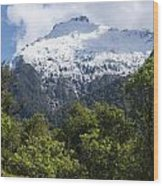 Mt. Aspiring National Park Peaks Wood Print