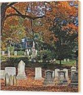 Mt Auburn Cemetery 12 Wood Print