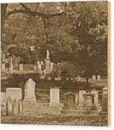 Mt Auburn Cemetery 13 Sepia Wood Print