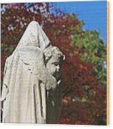 Mt Auburn Cemetery 8 Wood Print