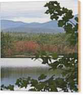 Mt Chocorua Through The Trees Wood Print