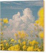 Mt Cloud Wood Print by Davorin Mance