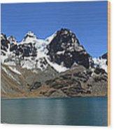 Mt Condoriri Panorama Wood Print