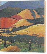 Mt. Diablo 1 Wood Print