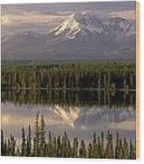 Mt Drum Over Willow Lake Wrangell-st Wood Print