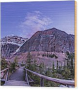 Mt. Edith Cavell Trail At Twilight Wood Print