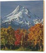 1m5117-mt. Hood In Autumn Wood Print