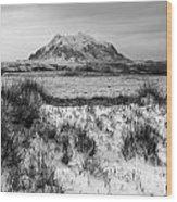 Mt Illimani In Monochrome Wood Print
