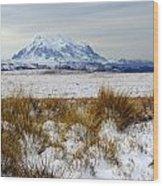 Mt Illimani In Winter Wood Print