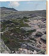 Mt Katahdin Appalachian Trail Wood Print