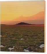 Mt Kilimanjaro Wood Print