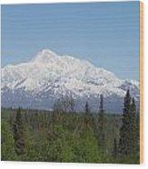 Mt. Mckinley 1 Wood Print
