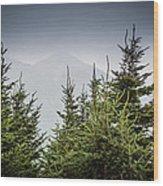 Mt. Mitchell In Fog Wood Print