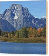 Mt Moran View Wood Print