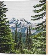 Mt. Rainier Framed Wood Print