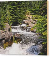 Mt. Rainier Waterfall Wood Print