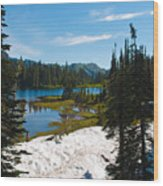 Mt. Rainier Wilderness Wood Print