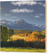 Mt Sneffels And The Dallas Divide Wood Print by Ken Smith